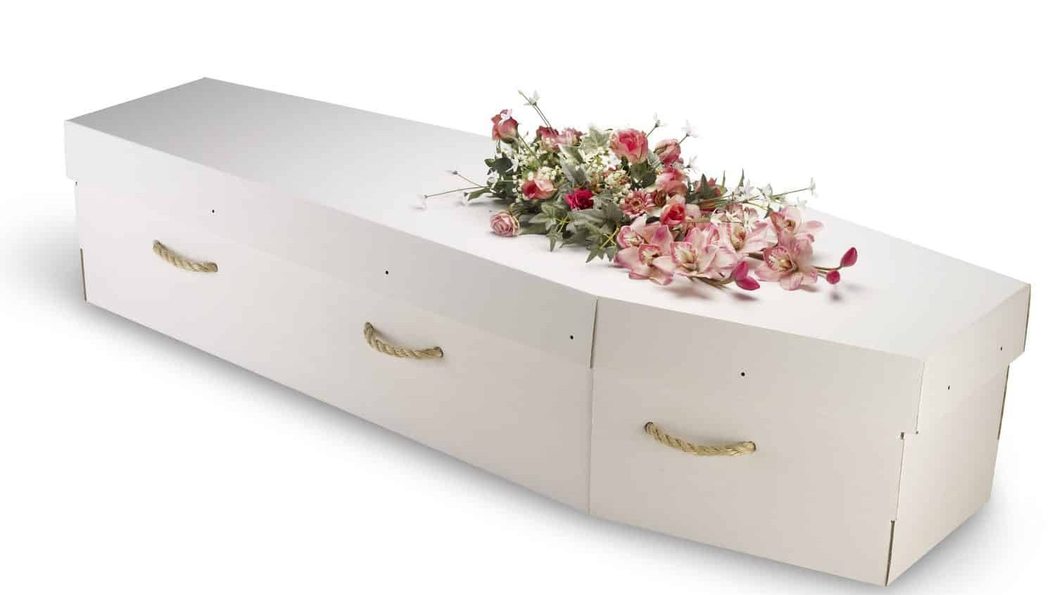 cardboard coffin with handles
